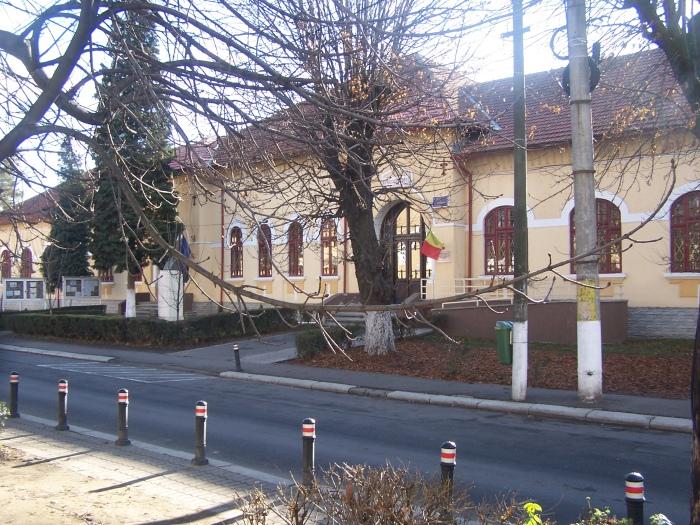 """Şcoala Gimnazială """"Alexandru Ştefulescu"""""""
